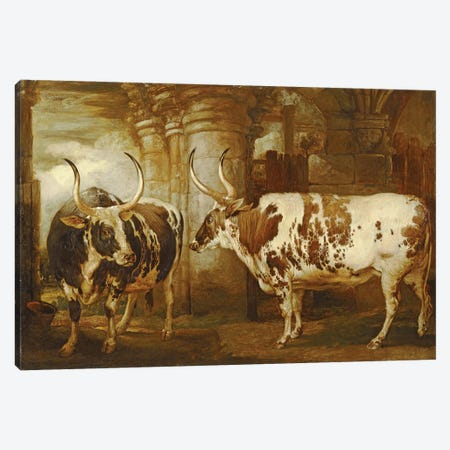 Portraits Of Two Extraordinary Oxen, The Property Of The Earl Of Powis, 1814 Canvas Print #BMN11141} by James Ward Canvas Art Print