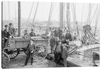 Unloading Oyster Luggers, Baltimore, Maryland, 1905 Canvas Art Print