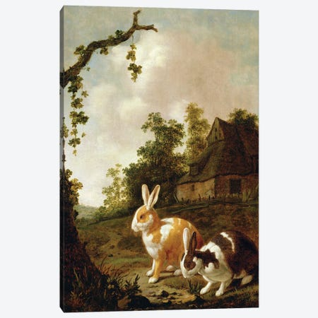 Wooded Landscape With Two Hares Canvas Print #BMN11225} by Dirck Wyntrack Canvas Print