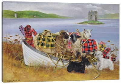 Sheep With Tartan, 1999 Canvas Art Print