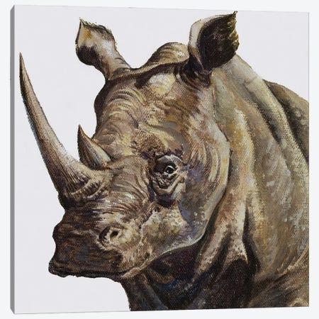 White Rhinoceros, 1980 Canvas Print #BMN11284} by English School Canvas Print