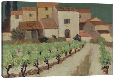 Vineyard, Provence Canvas Art Print