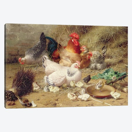 Hens Roosting With Their Chickens Canvas Print #BMN11336} by Eugene Remy Maes Canvas Print