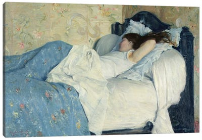 In Bed Canvas Art Print