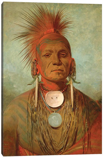 See-non-ty-a, An Iowa Medicine Man, c.1844-45 Canvas Art Print