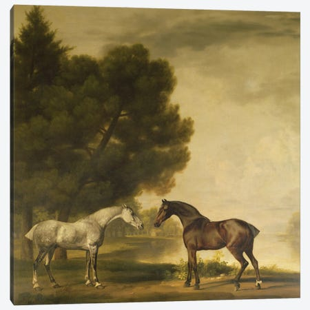 A Grey And A Bay In A Landscape Canvas Print #BMN11555} by George Stubbs Canvas Print