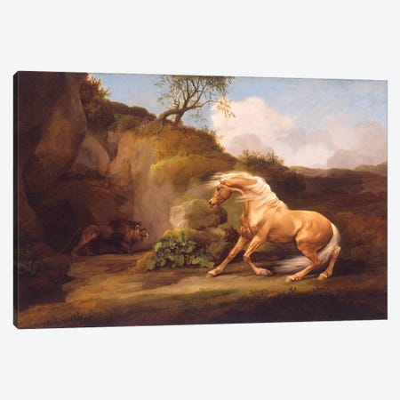 A Horse Frightened By A Lion, c.1790-5 Canvas Print #BMN11556} by George Stubbs Art Print