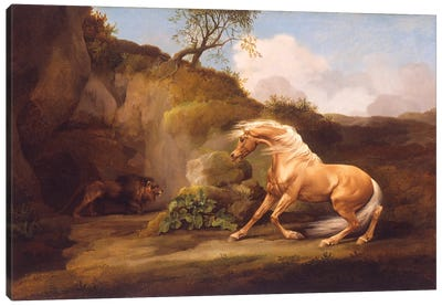 A Horse Frightened By A Lion, c.1790-5 Canvas Art Print