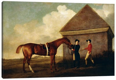 Eclipse (A Dark Chestnut Racehorse) Held By A Groom, With A Jockey, By The Rubbing Down House At Newmarket, 1770 Canvas Art Print