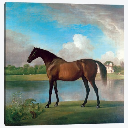 Lord Bolingbroke's Brood Mare In The Grounds Of Lydiard Park, Wiltshire, c.1764-66 Canvas Print #BMN11566} by George Stubbs Canvas Artwork