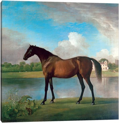 Lord Bolingbroke's Brood Mare In The Grounds Of Lydiard Park, Wiltshire, c.1764-66 Canvas Art Print