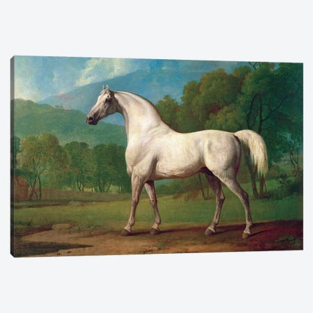 Mambrino, c.1790 Canvas Print #BMN11569} by George Stubbs Canvas Print