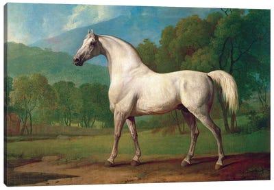 Mambrino, c.1790 Canvas Art Print