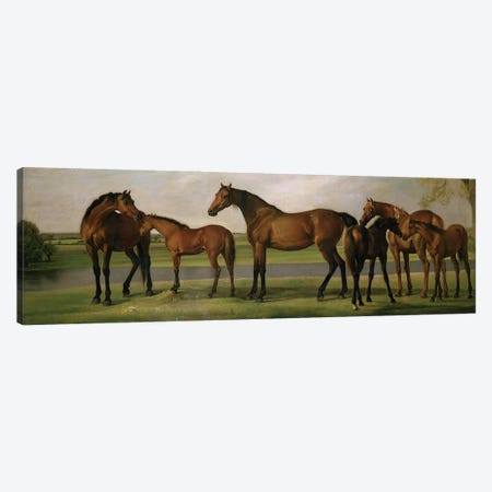 Mares And Foals Disturbed By An Approaching Storm, 1764-66 Canvas Print #BMN11571} by George Stubbs Canvas Art