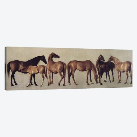 Mares And Foals Without A Background, c.1762 Canvas Print #BMN11572} by George Stubbs Canvas Artwork