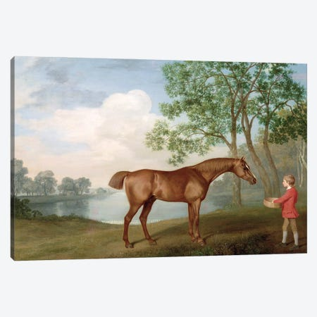 Pumpkin With A Stable-Lad, 1774 Canvas Print #BMN11575} by George Stubbs Canvas Art Print