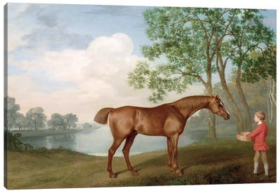 Pumpkin With A Stable-Lad, 1774 Canvas Art Print