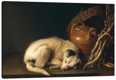 Dog At Rest, 1650 Canvas Art Print
