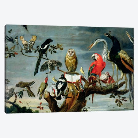 Concert of Birds  Canvas Print #BMN1165} by Frans Snyders Canvas Artwork