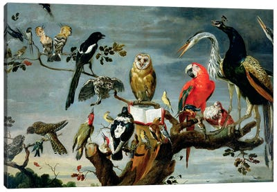 Concert of Birds  Canvas Art Print