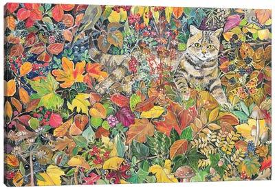 Tabby In Autumn, 1996 Canvas Art Print