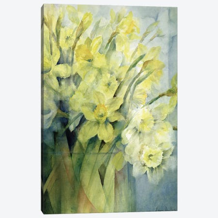 Daffodils, Uncle Remis And Ice Follies Canvas Print #BMN11668} by Karen Armitage Canvas Art