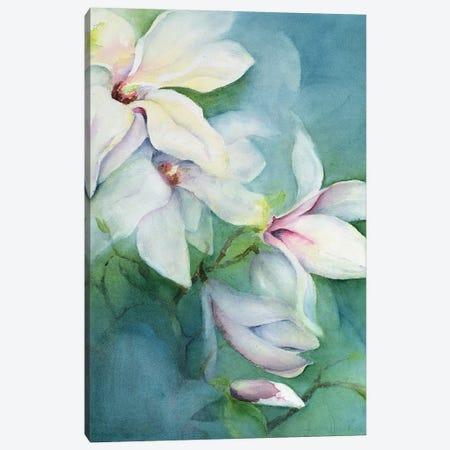 Magnolia Dedudata Canvas Print #BMN11672} by Karen Armitage Art Print