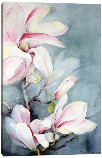 Magnolia Soulangeana II Canvas Art Print