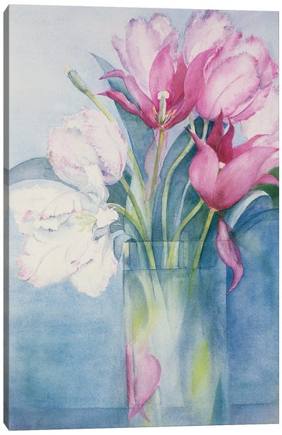 Pink Parrot Tulips And Marlette Canvas Art Print