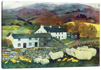 Sheep Country, 1988 Canvas Art Print