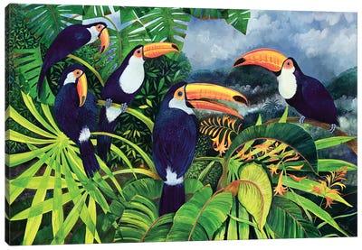 Toucan Talk Canvas Art Print