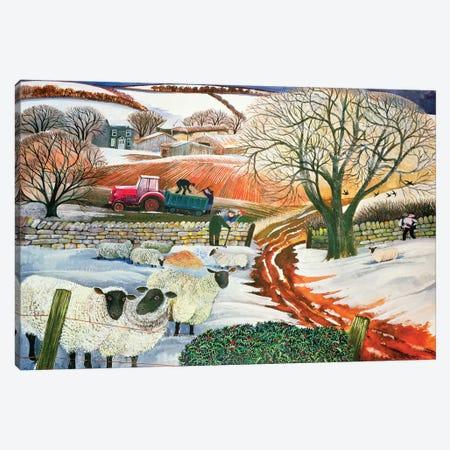 Winter Woolies Canvas Print #BMN11701} by Lisa Graa Jensen Canvas Art Print
