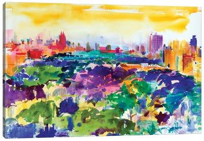 Central Park, New York, 2011 Canvas Art Print