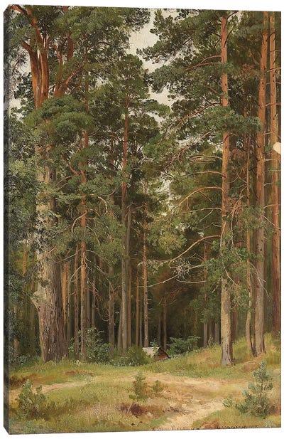A Summer Day, Merikiul, 1895 Canvas Art Print