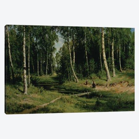 In The Birch Tree Forest, 1883 Canvas Print #BMN11934} by Ivan Ivanovich Shishkin Art Print