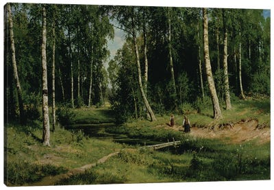 In The Birch Tree Forest, 1883 Canvas Art Print