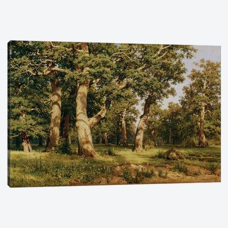Oak Grove, 1887 Canvas Print #BMN11936} by Ivan Ivanovich Shishkin Canvas Print