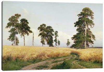 The Field Of Wheat, 1878 Canvas Art Print