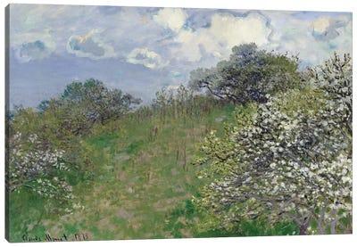 Spring, 1875 Canvas Print #BMN1208