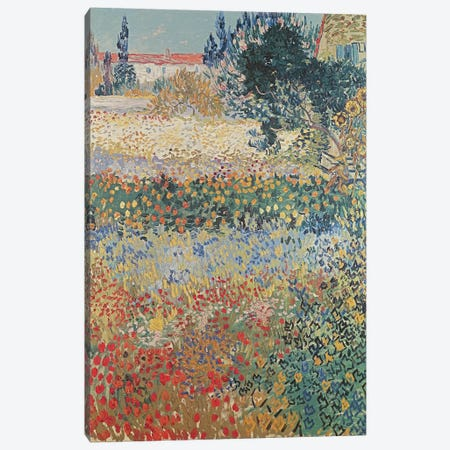 Garden in Bloom, Arles, July 1888  Canvas Print #BMN1223} by Vincent van Gogh Canvas Artwork