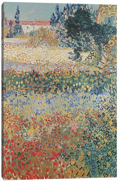 Garden in Bloom, Arles, July 1888  Canvas Art Print