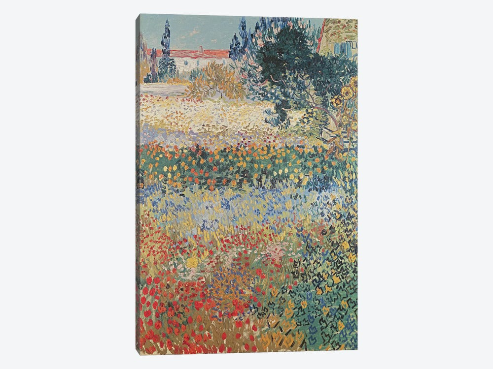Garden in Bloom, Arles, July 1888  by Vincent van Gogh 1-piece Canvas Print