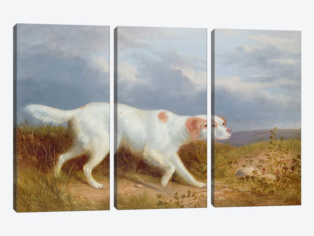 A Setter on the Moor by Philip Reinagle 3-piece Canvas Wall Art