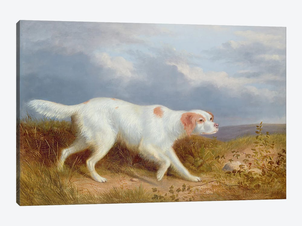 A Setter on the Moor by Philip Reinagle 1-piece Canvas Wall Art