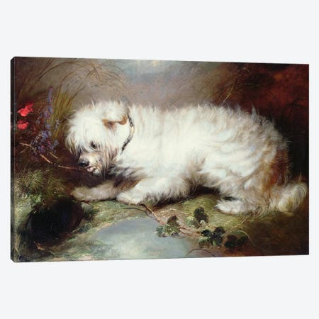 On the Watch, 1867 Canvas Print #BMN1252} by George Armfield Canvas Print