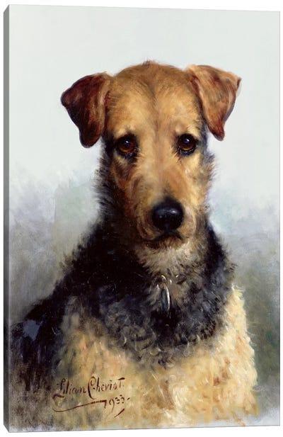 Wire Fox Terrier, 1933 Canvas Art Print