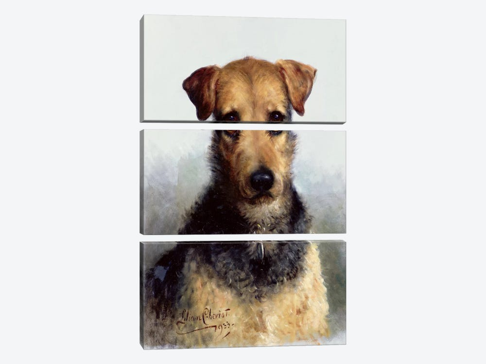 Wire Fox Terrier, 1933 by Lilian Cheviot 3-piece Canvas Art