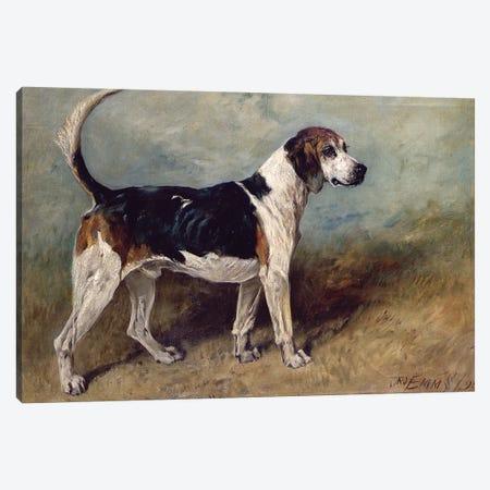 Moonstone, 1895 Canvas Print #BMN1257} by John Emms Canvas Artwork