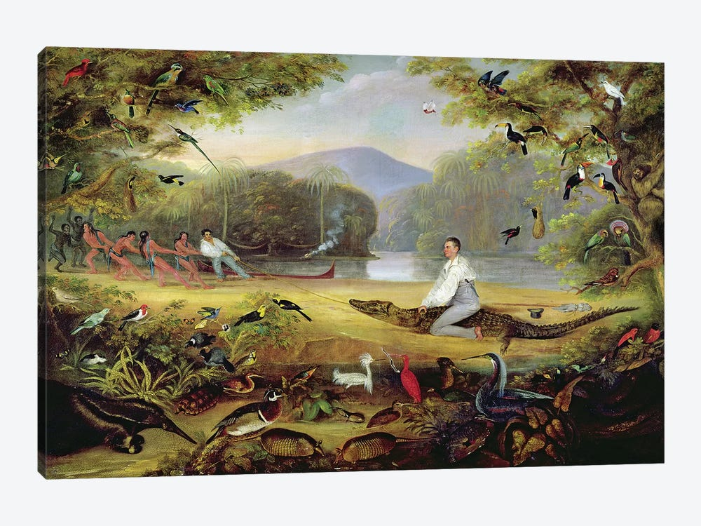Charles Waterton capturing a cayman, 1825-26 by Captain Edward Jones 1-piece Canvas Print