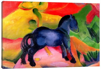 Little Blue Horse, 1912  Canvas Print #BMN1265